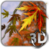 Autumn Leaves in HD Gyro 3D