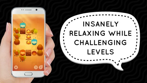 WTF?! Relaxing Brain Game